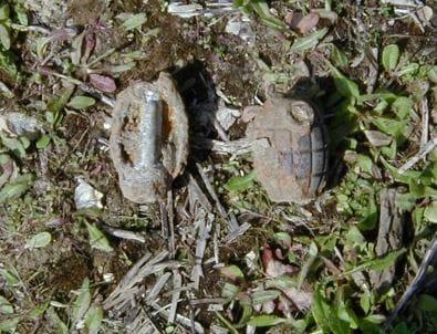 Unexploded Grenade Found in East Sussex Garden