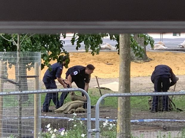 Controlled Explosion as Mortar Found in Brighton City Centre